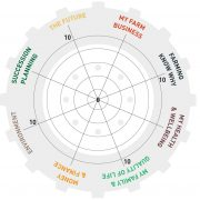 Tractor Wheel of Life Self Assessment Tool