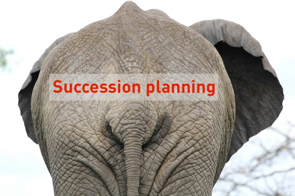 Removing the succession planning elephant from the room